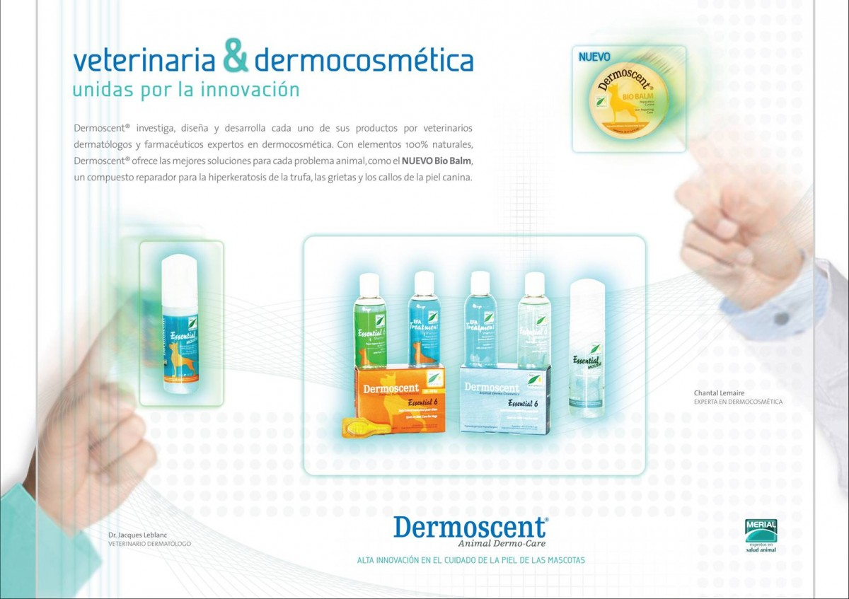 1 Dermoscent vets