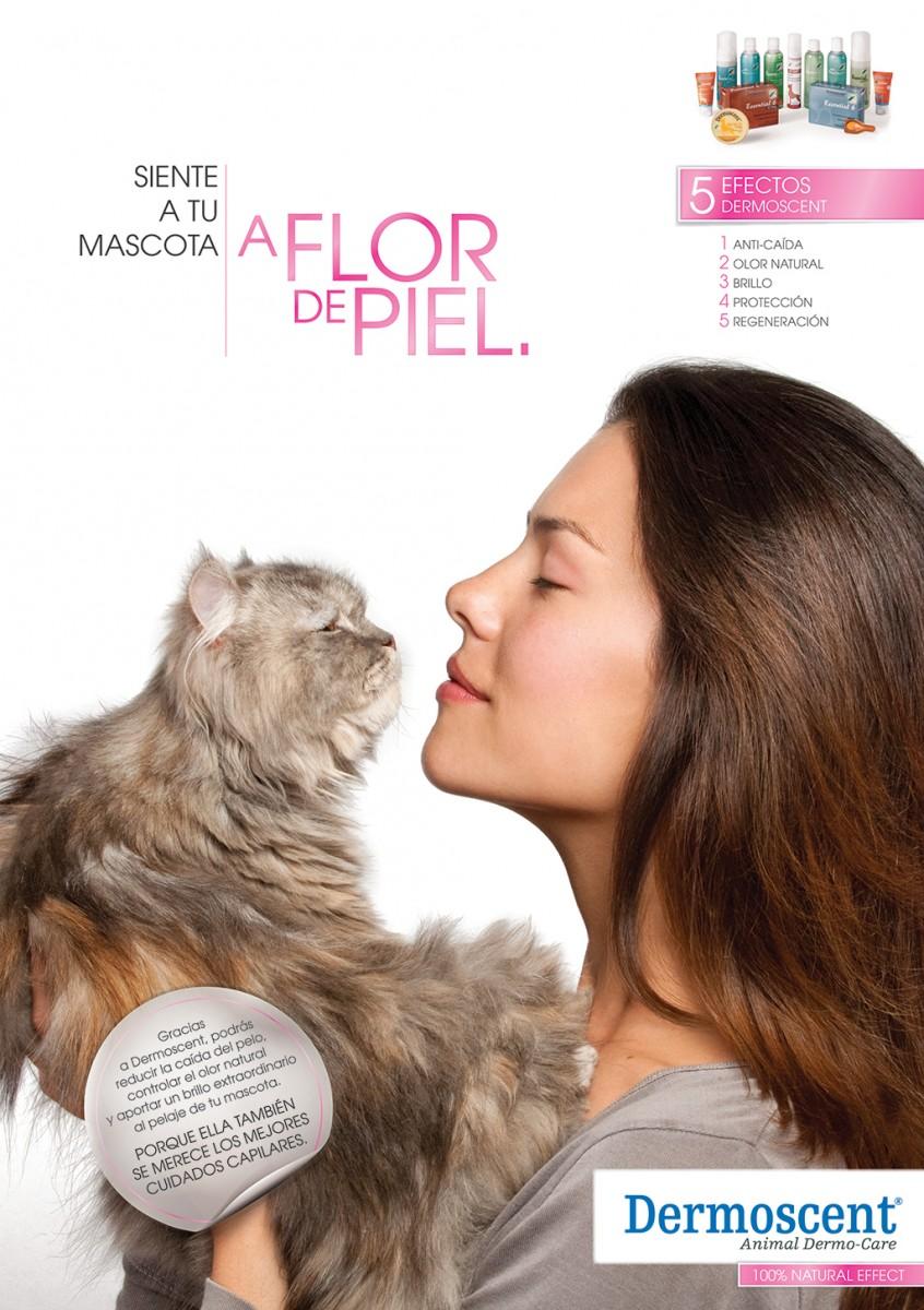 3Dermoscent-A-flor-de-piel-gato