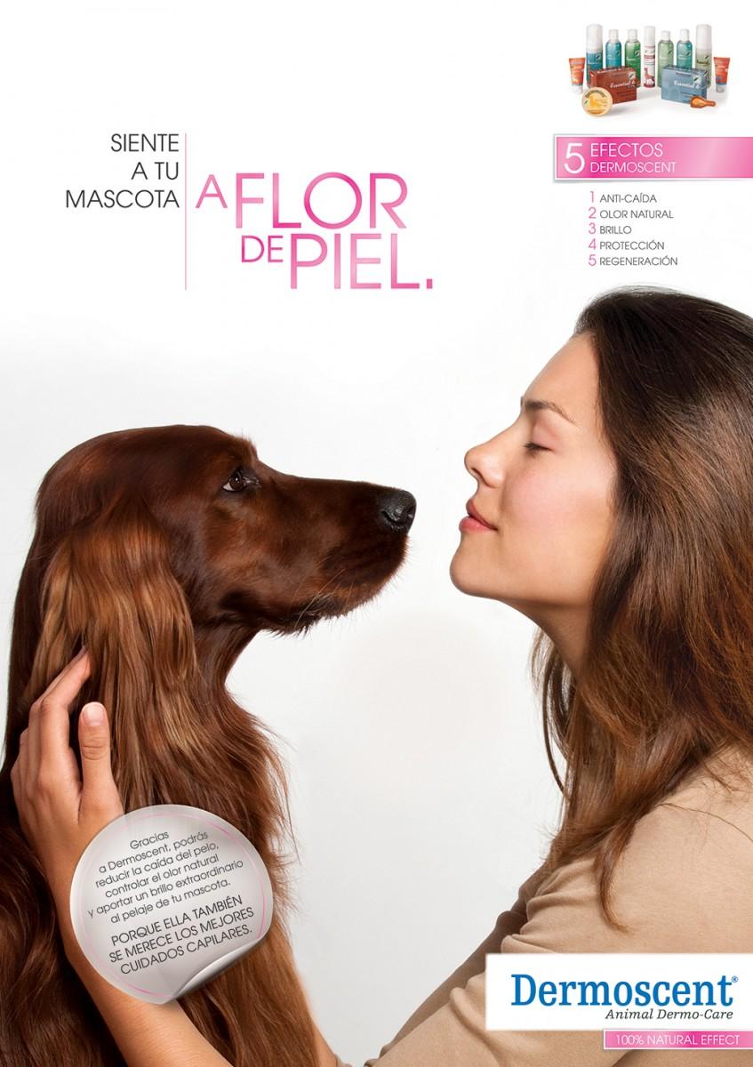 3Dermoscent-A-flor-de-piel-perro