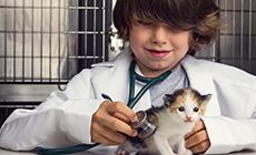vacunaccion-2014
